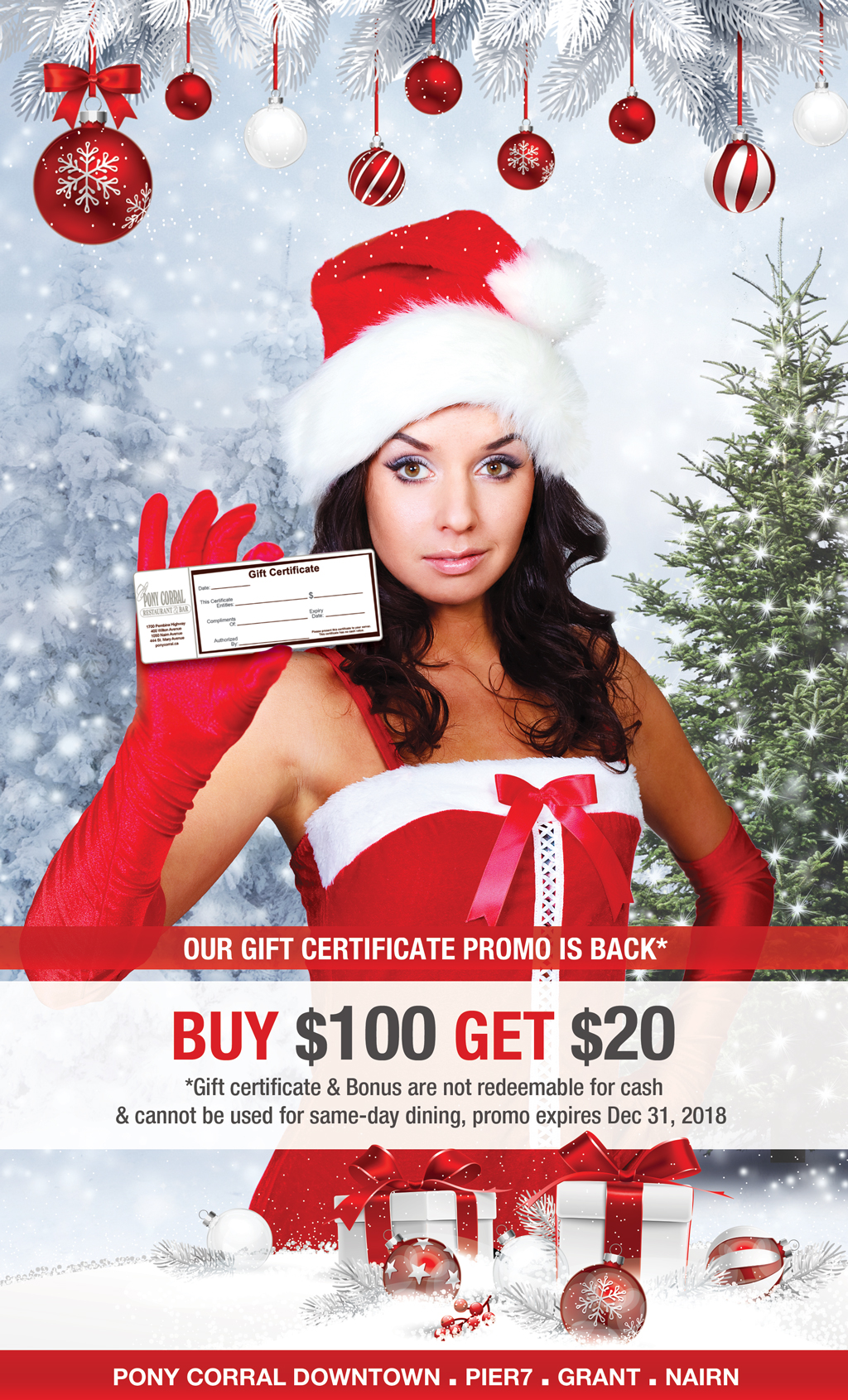 Holiday - Christmas - Gift Certificate - Gift Card